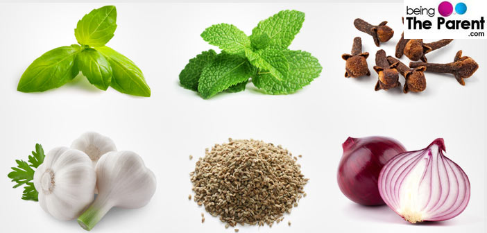 10 Natural Remedies To Get Relief From Toothache During