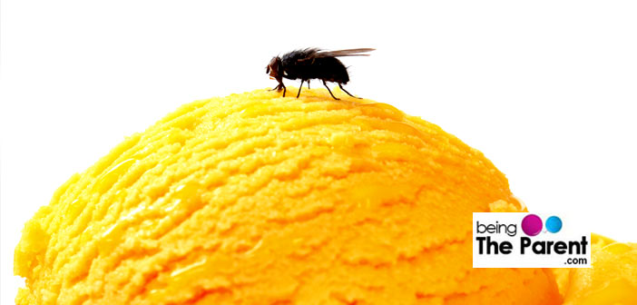 Top Natural Remedies To Get Rid Of Flies