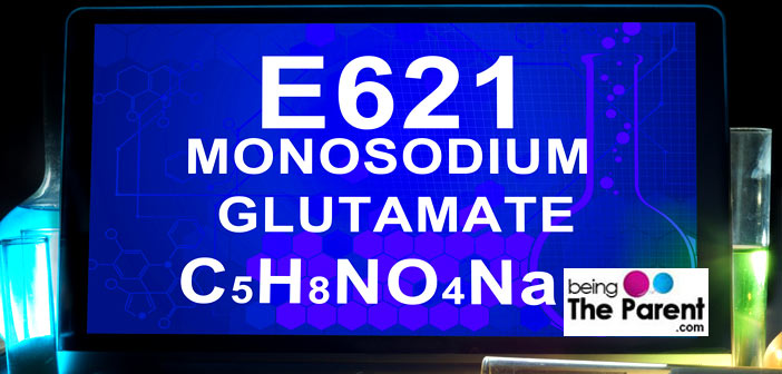 E621-MSG