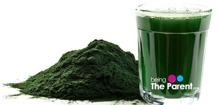 Spirulina drink and powder