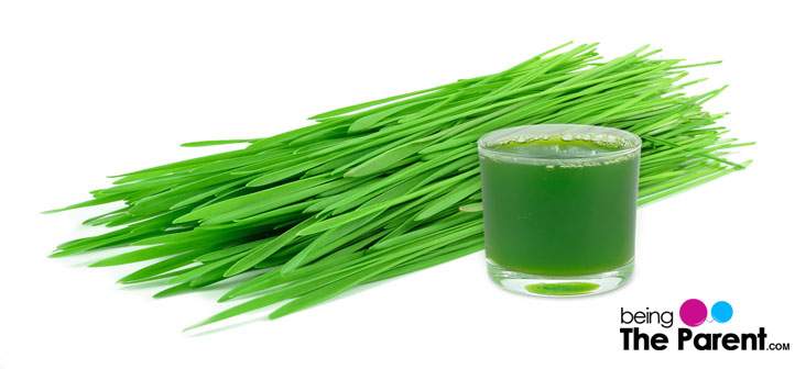 wheatgrass during pregnancy