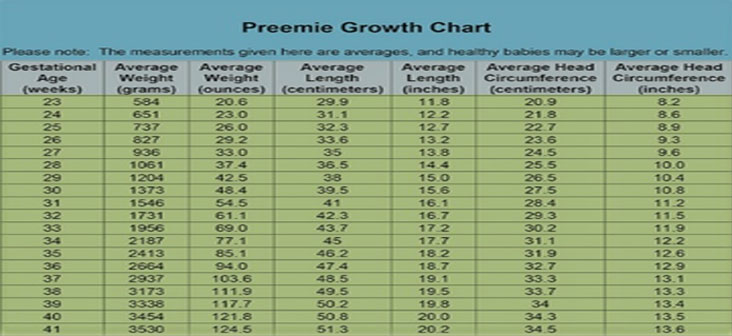 Know About Premature Baby Weight Gain And Weight Chart Being The