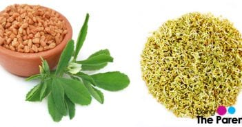 fenugreek during breastfeeding