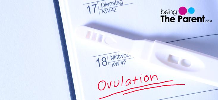 ovulation-symptoms