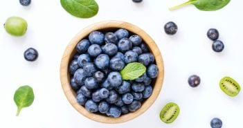 Blueberries for Babies