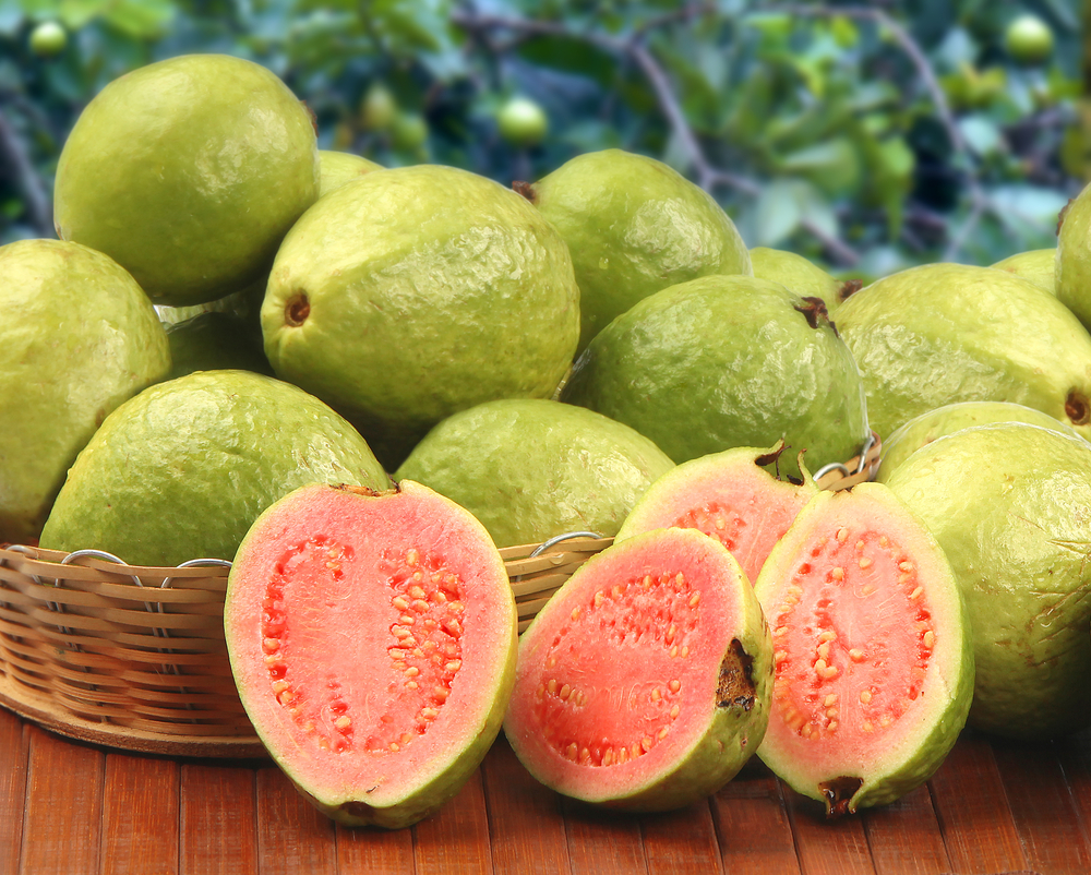 Guavas For Babies