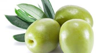 Olives During Pregnancy