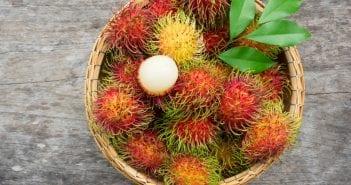 Rambutan Fruit During Pregnancy