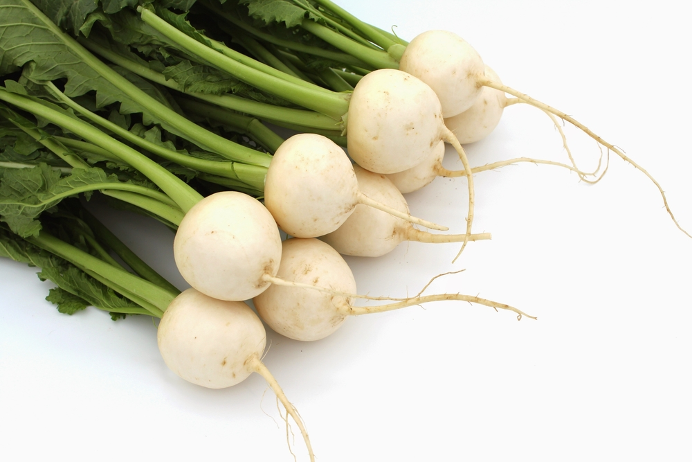 Turnips for Babies