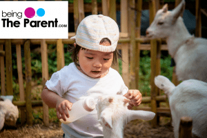 Goat Milk For Babies: When To Give And What Are Its Benefits