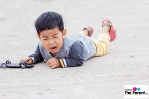 Toddler crying over everything