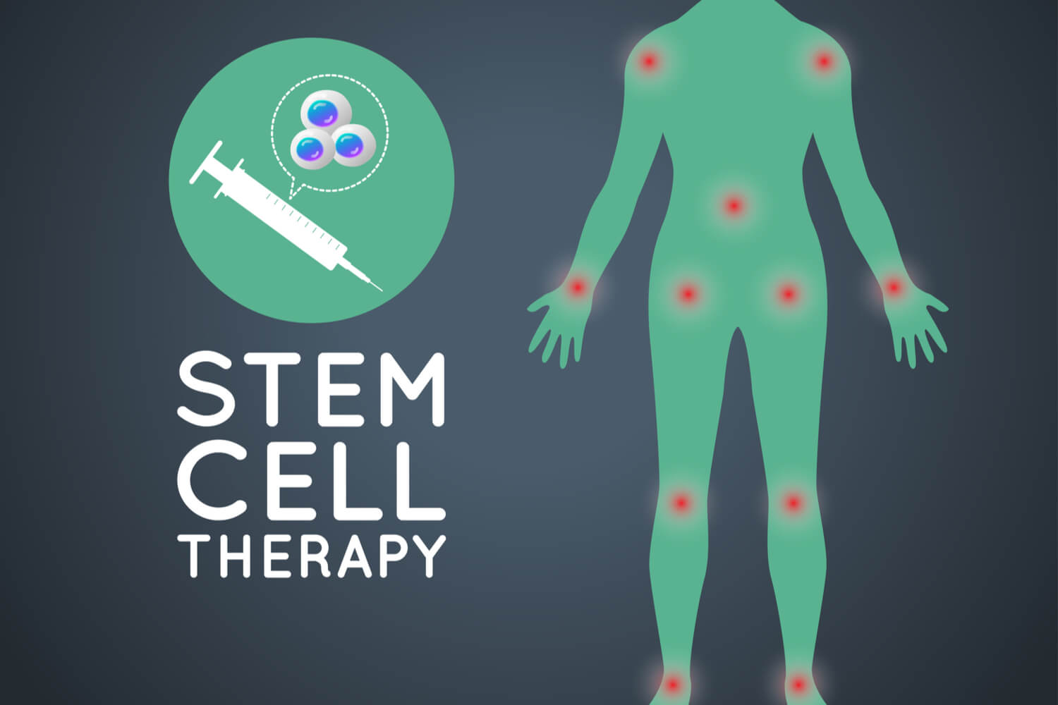 Stem Cells Uses, Importance, and Potential Medical Applications