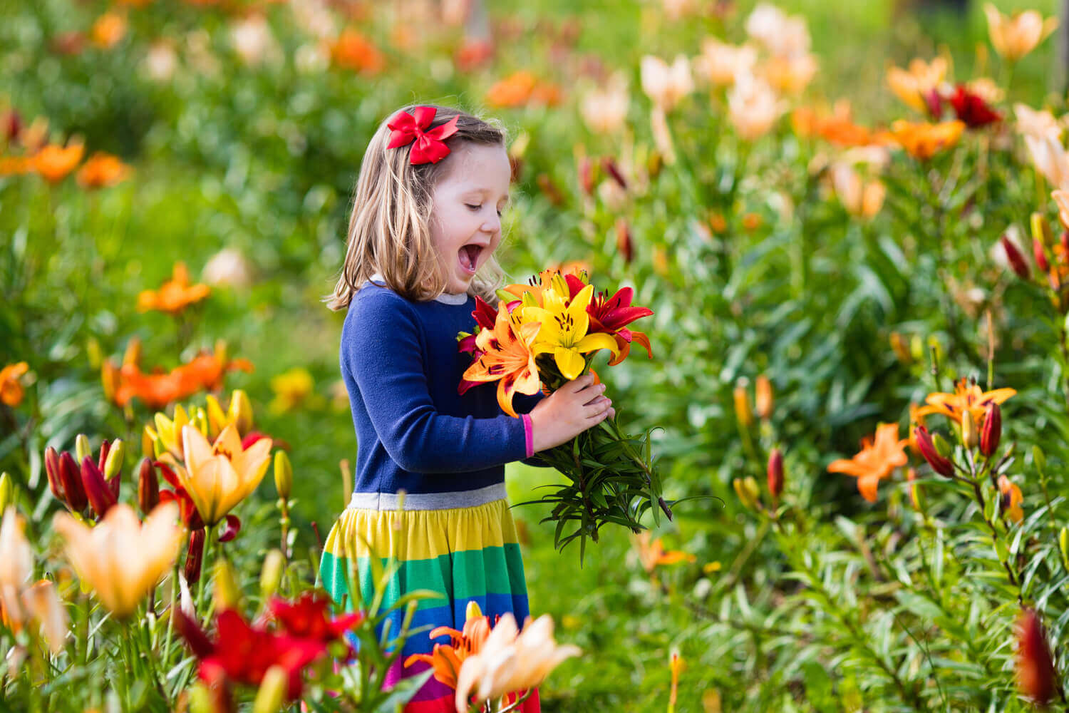kid happy seeing different colours of flowers in hand