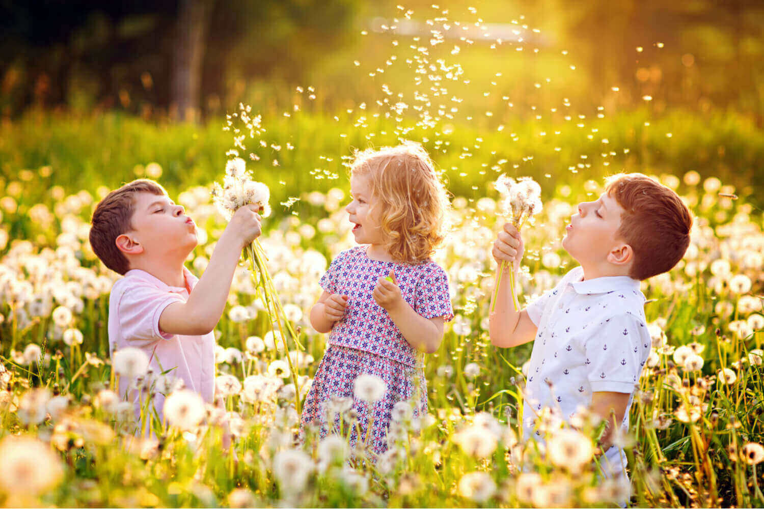 kids are playing with dandelion in the garden