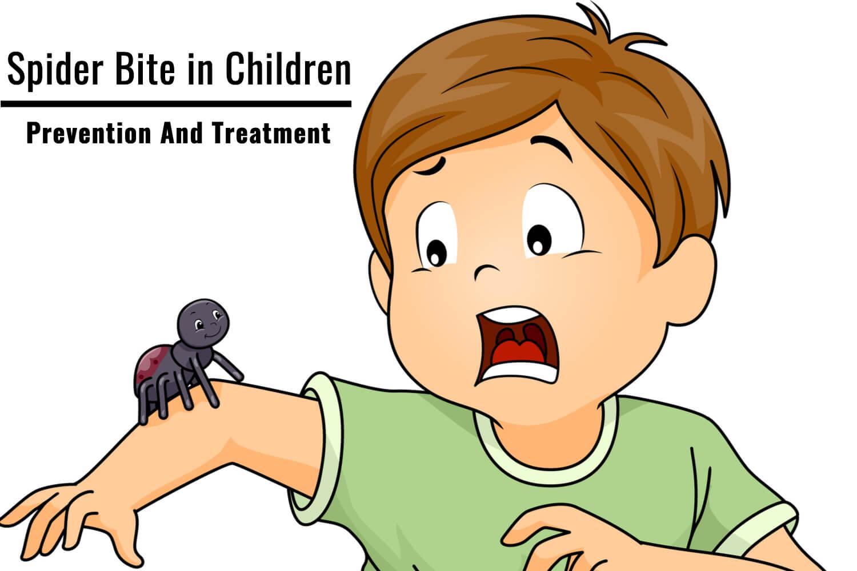 Spider Bite in Children- Prevention And Treatment
