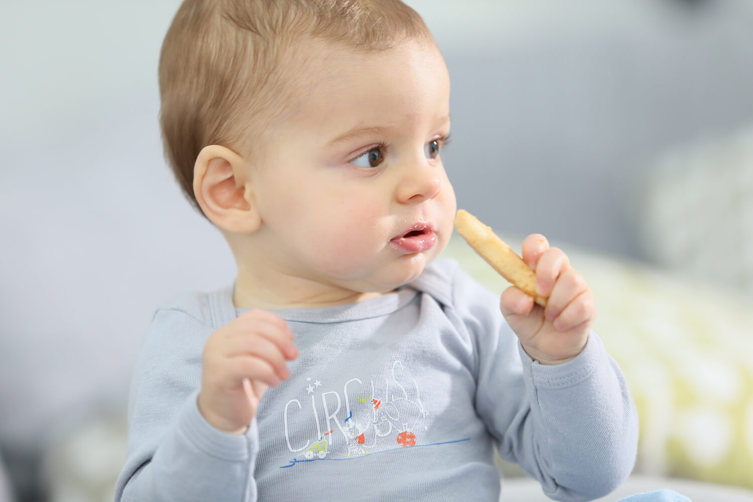 Biscuits For Babies- Good or Bad?
