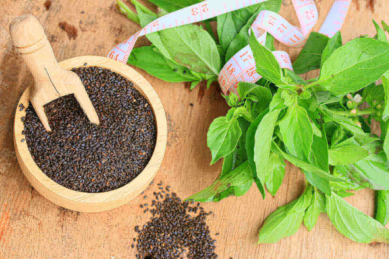 Basil Seeds During Pregnancy: Safe or Risky?